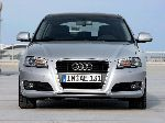 photo 23 Car Audi A3 Hatchback 3-door (8P/8PA [2 restyling] 2008 2013)